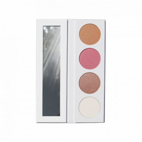 Paletka perfect complexion 4w1